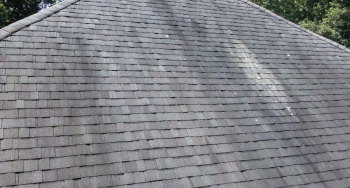 Black Streaks Roof